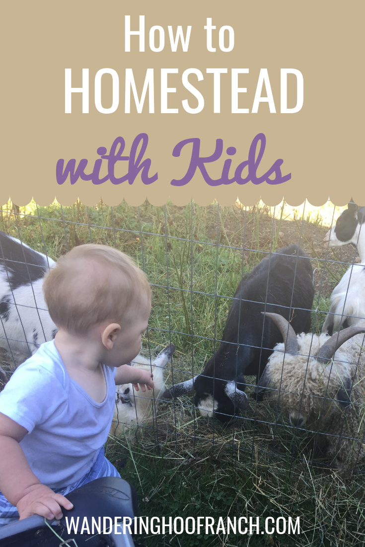how to homestead with kids