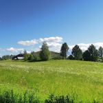 10 things worth considering when buying your dream rural property to homestead