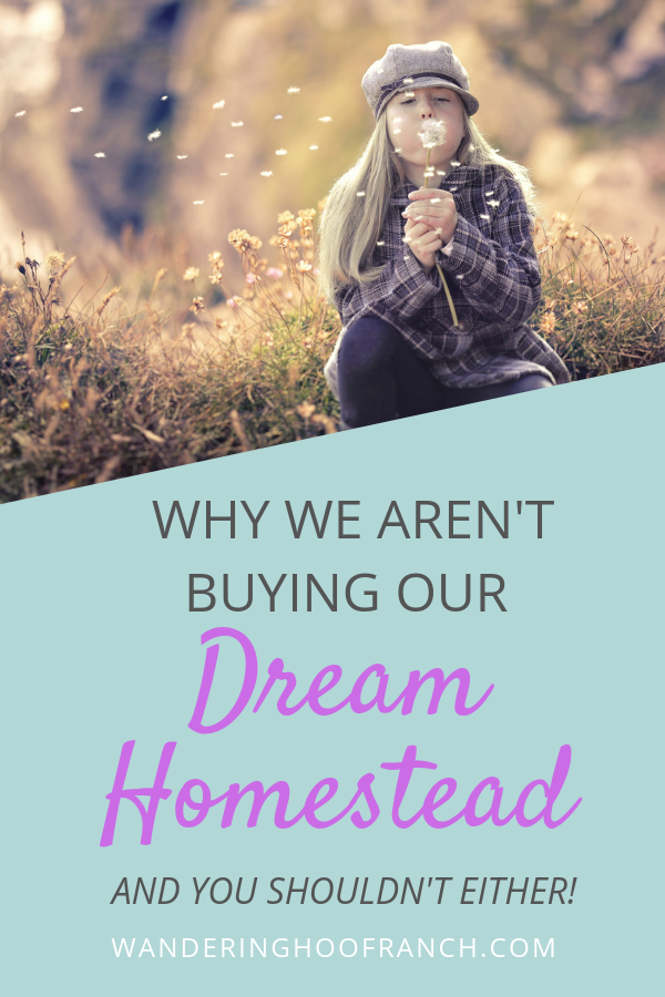 why we aren't buying our dream homestead property and you shouldn't either