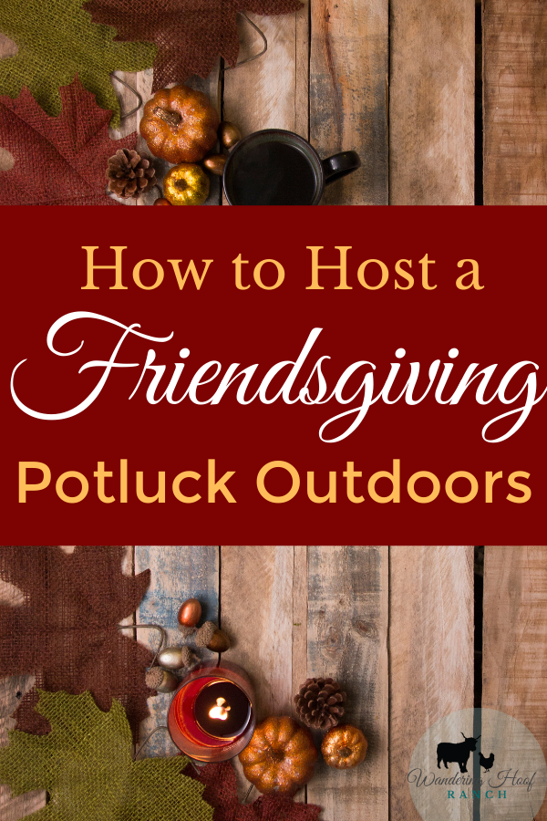 Ultimate guide to hosting a friendsgiving potluck outdoors. Includes steps to organize, recipes and favour ideas.