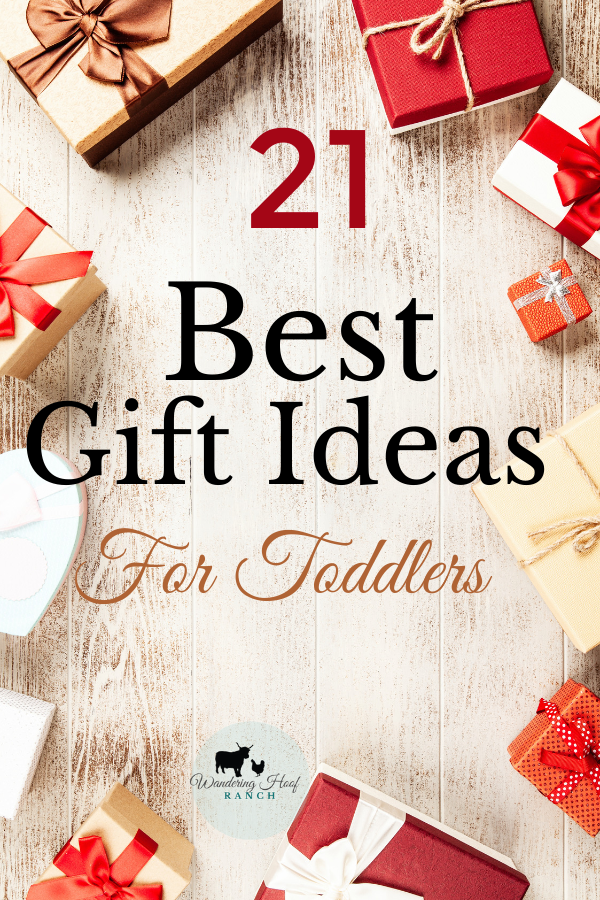 Toddlers are a fun age to buy gifts for. There are endless ideas for fun practical gifts that children love that aren't always toys.  I love watching children open gifts, especially toddlers. Check out the best gift ideas for toddlers of 2019, geared towards experiential, outdoor, non toy ideas!