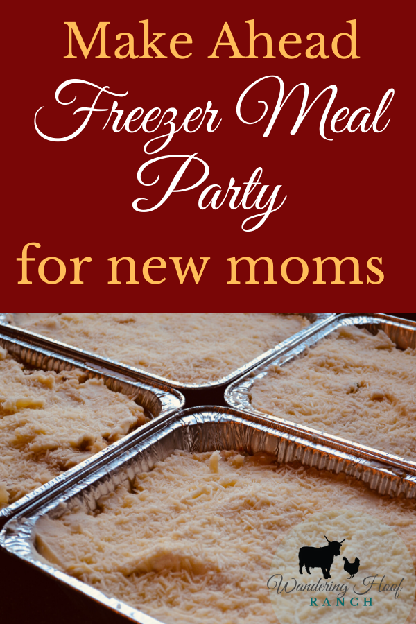 make ahead freezer meal party for new moms