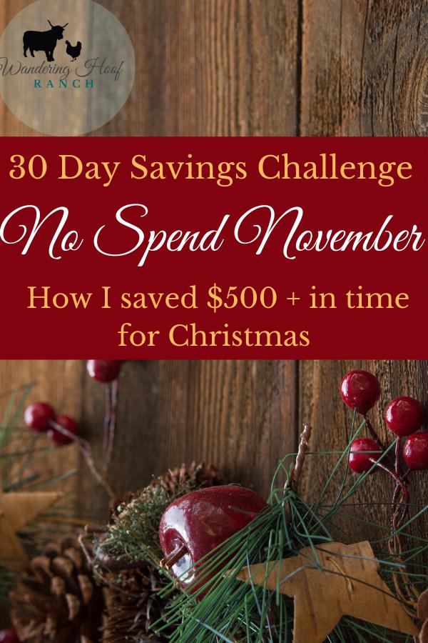 Money Saving Challenge, No Spend November