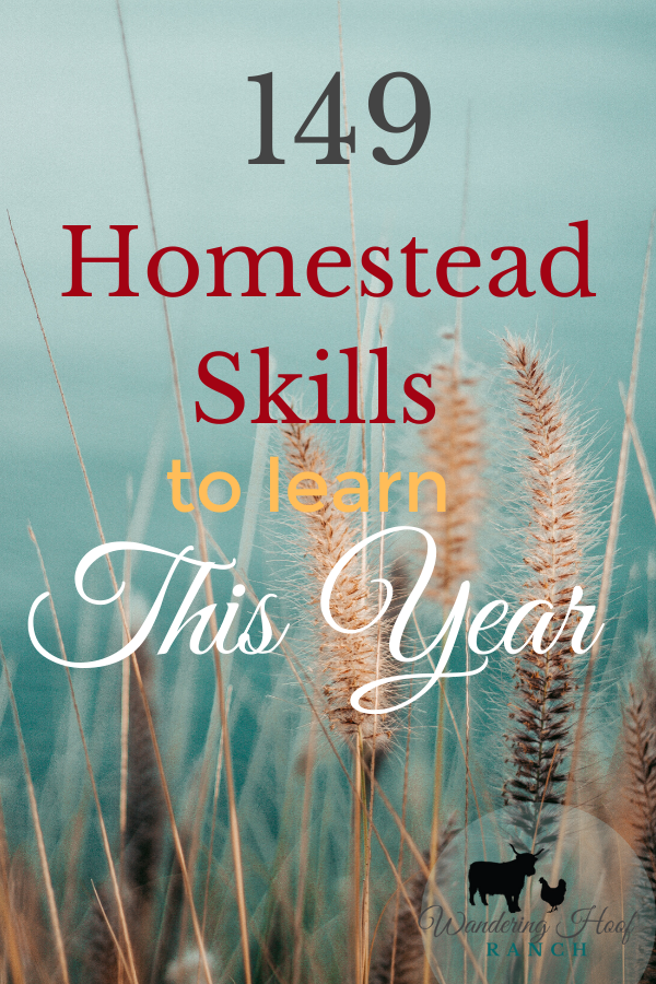 149 Homestead Skills to learn this year