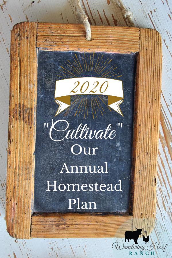 2020 goal plan pin