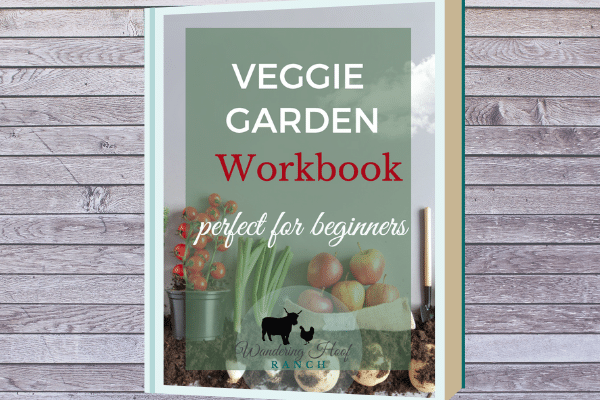 veggie garden workbook and email course