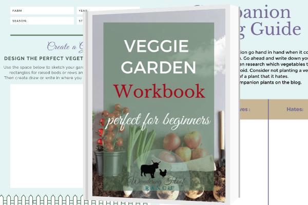 veggie garden workbook printable