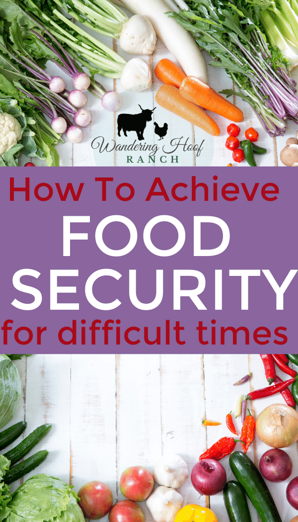 how to achieve food security for difficult times pin