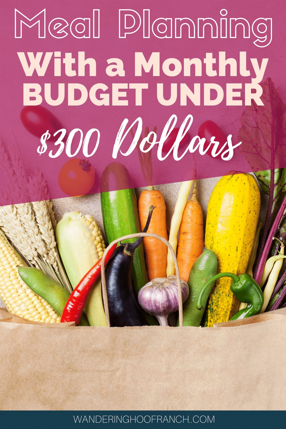 how to meal plan with a monthly budget under $300