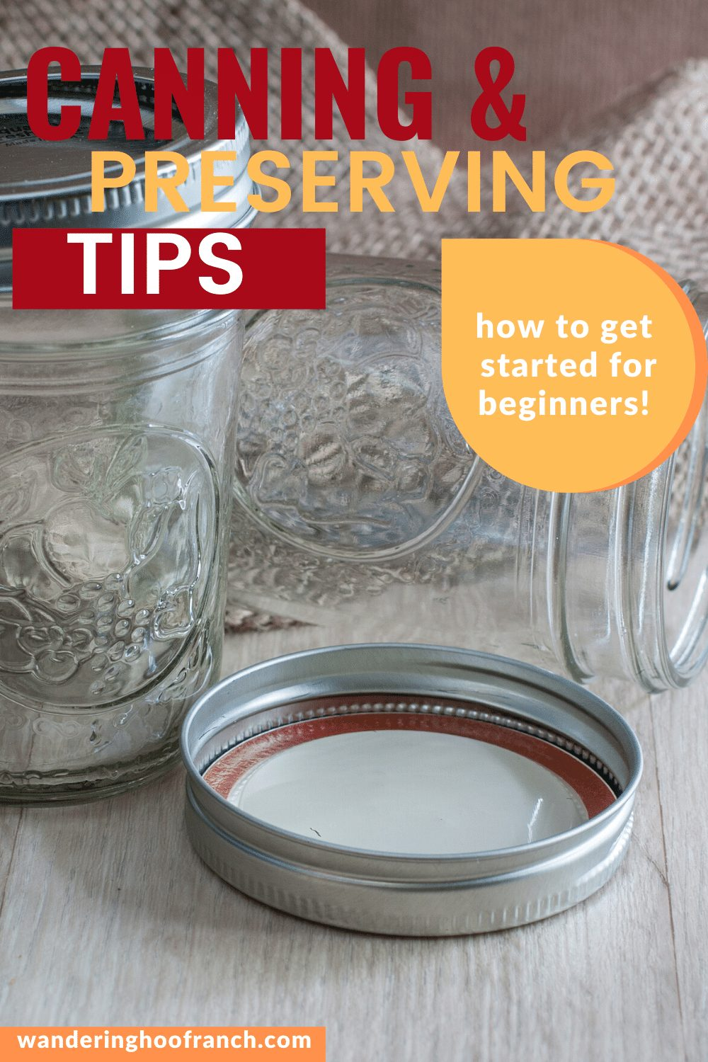 Beginners Guid to Preserving and Canning Pin image