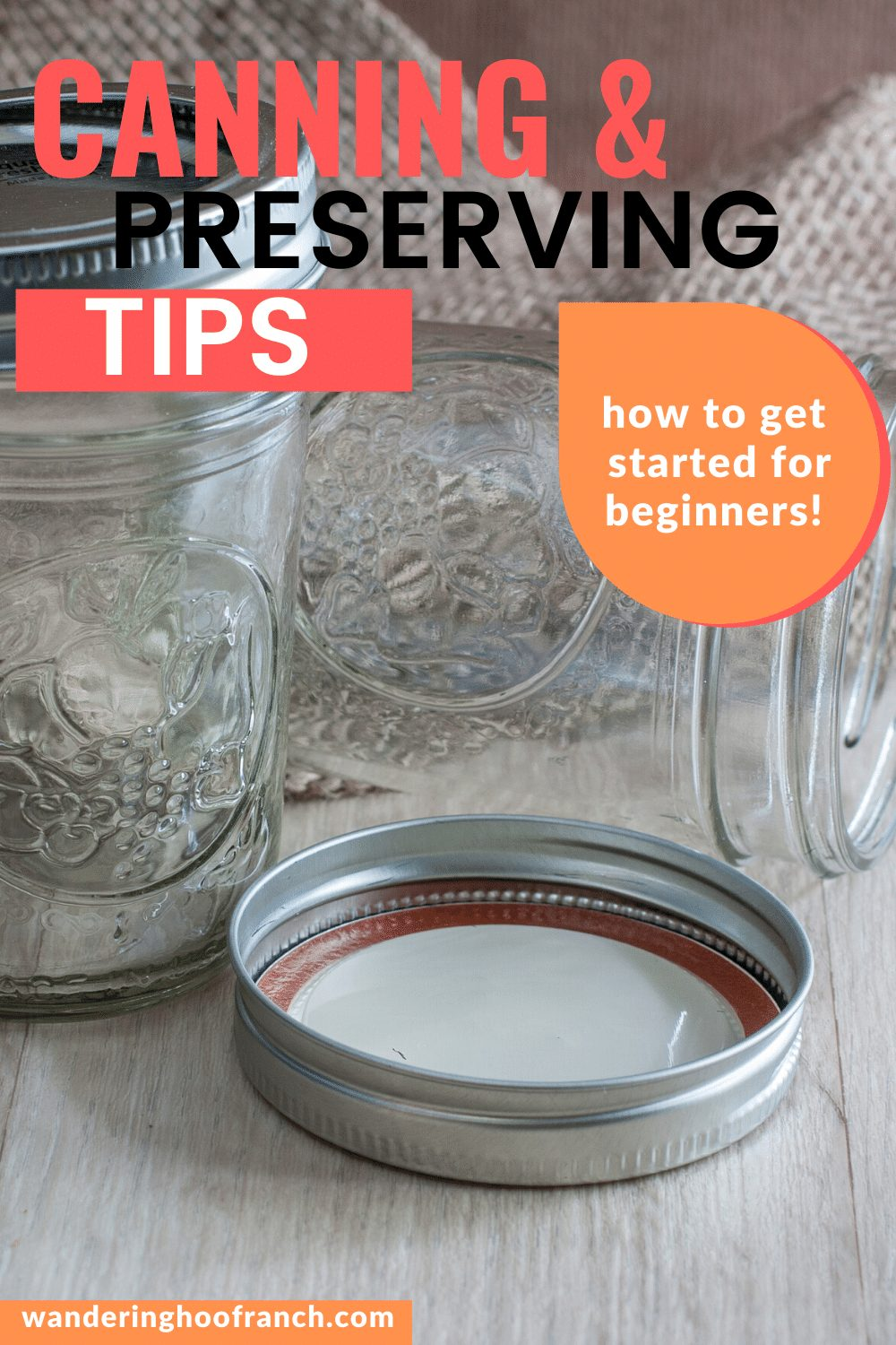 preserving and canning how to get started for beginners