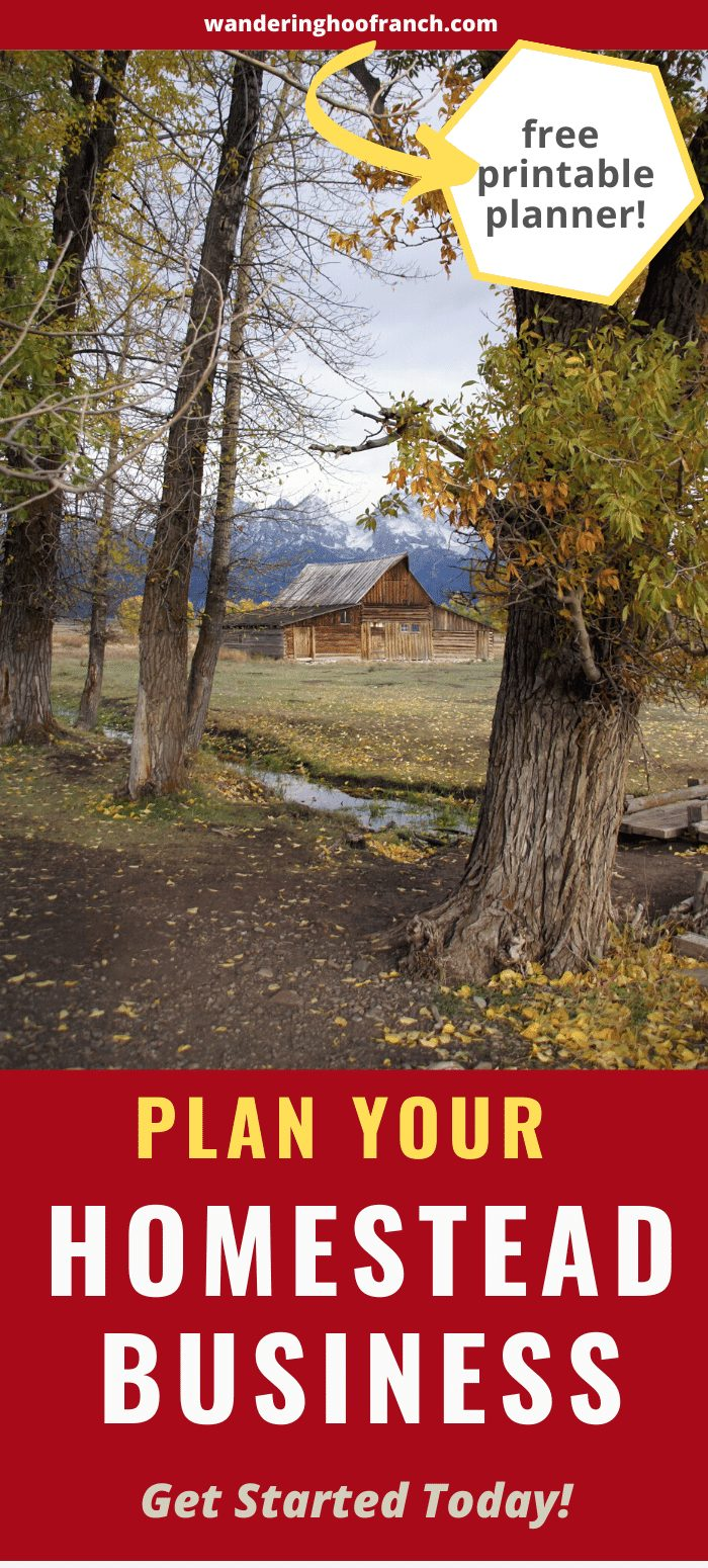 Plan your homestead business pin, picture of a tree, a homestead and the mountain behind