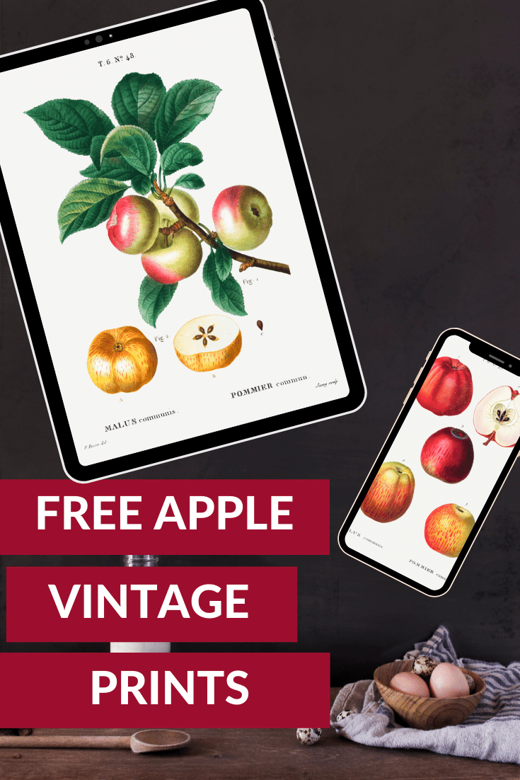 FREE APPLE VINTAGE PRINTS ON BLACK BACKGROUND