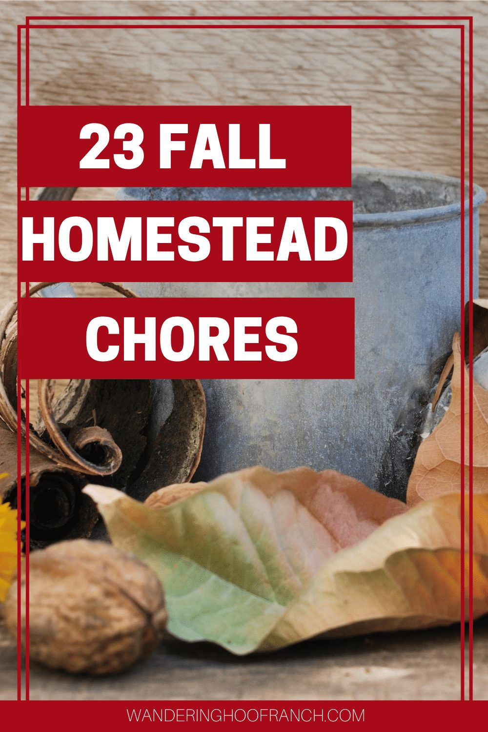 fall homesteading chores bucket and leaves
