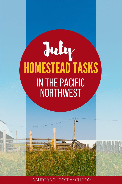 July homestead tasks