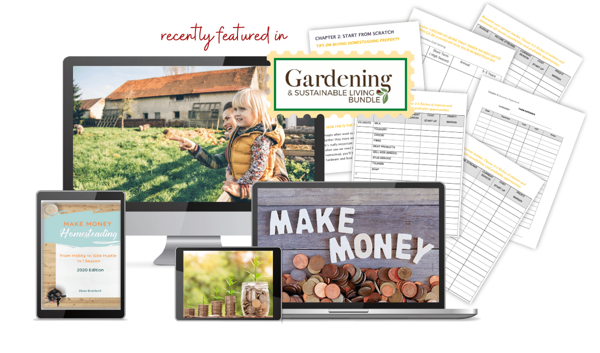 make money homesteading ebook mock up
