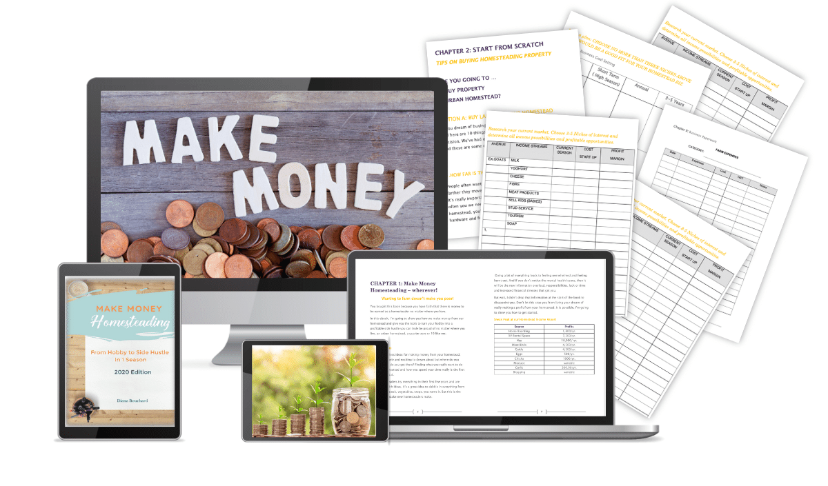 mock up computer screen, laptop, iPad and workbooks for the Make Money Homesteading Ebook