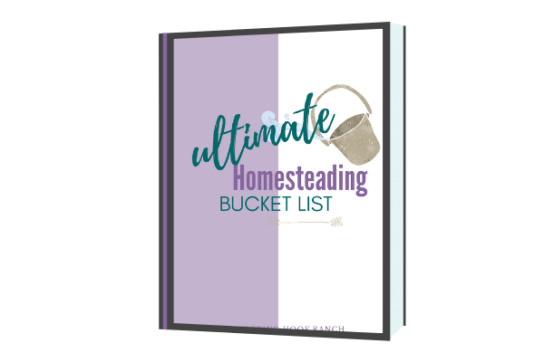 homesteading skills  bucket list