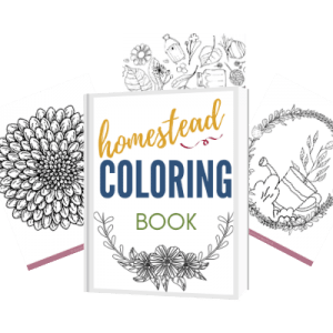 homestead colouring book