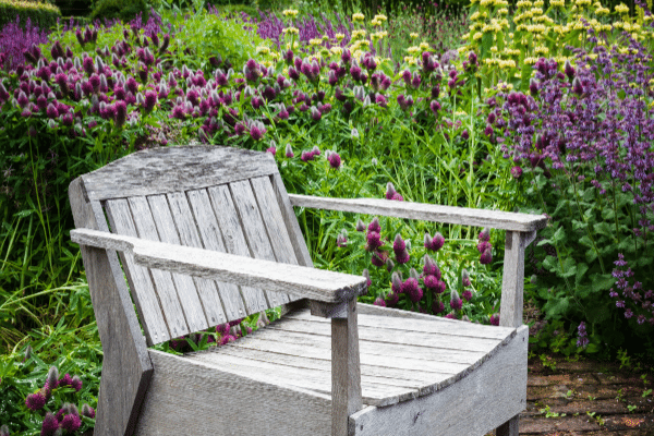 interview chair for the happy homesteaders interview series