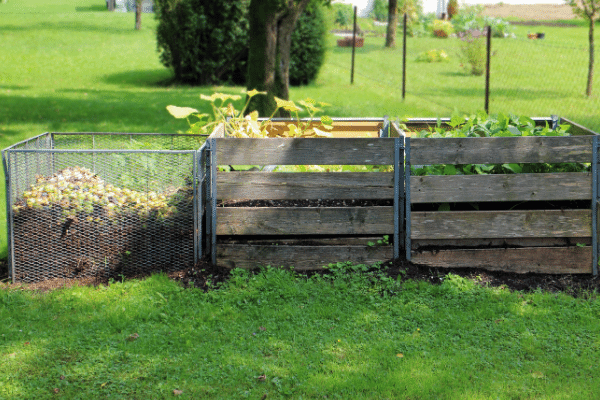 three bins of compost stacked side by side in a backyard field waiting to be turned and added to the back to eden garden