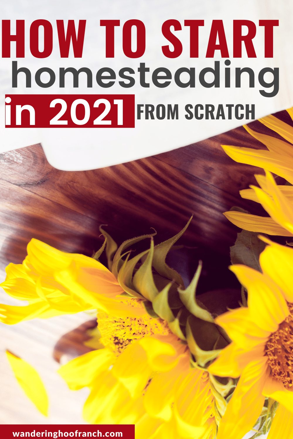 how to start homesteading from scratch in 2021 notebook and sunflowers on desk