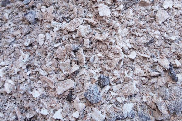 uncontaminated woodash  in a pile waiting to be added to the back to eden garden
